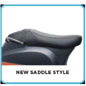New Saddle Style